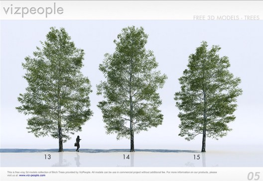 18 Free 3D Trees / Birch - 3D Architectural Visualization