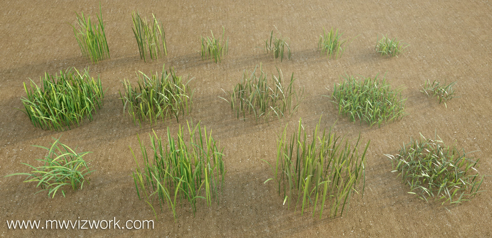 Free Grass by Mischa Winkler - 3D Architectural Visualization